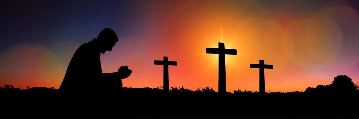 Cross 2981216 1281